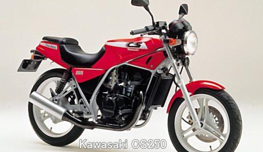 Kawasaki CS250 は凄い!??最強シングルレーサーの素質!