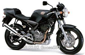SUZUKI-Goose250