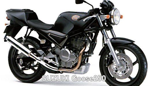 SUZUKI Goose250 ! 単気筒レーサーの原点!