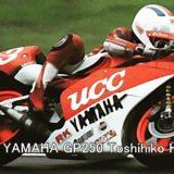 UCC YAMAHA GP250 Toshihiko Honma