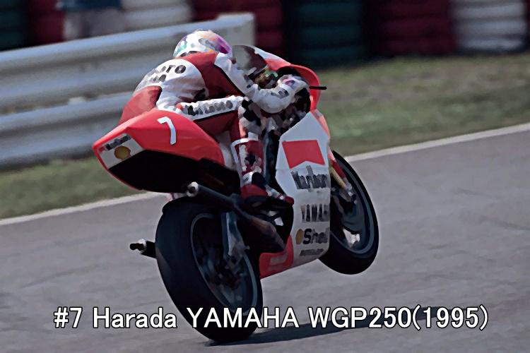 #7 Harada YAMAHA WGP250(1995)