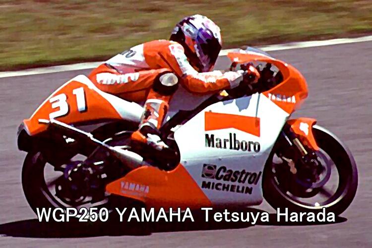WGP250 YAMAHA Tetsuya Harada