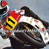 #11 Mike BaldwinYAMAHA YZR500